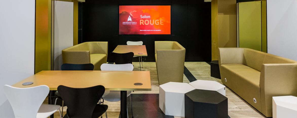 agora_ecran_salon_rouge