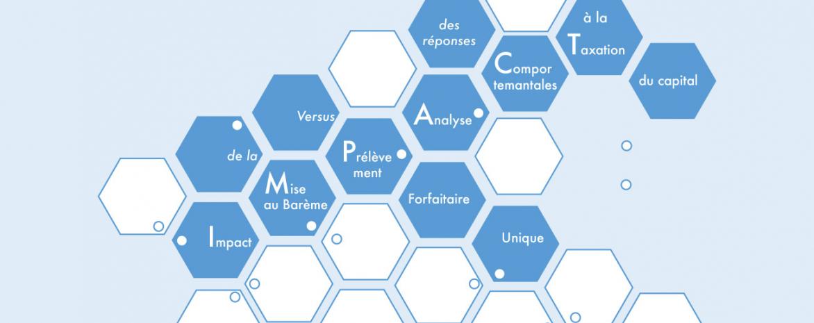 Visuel du projet IMPACT