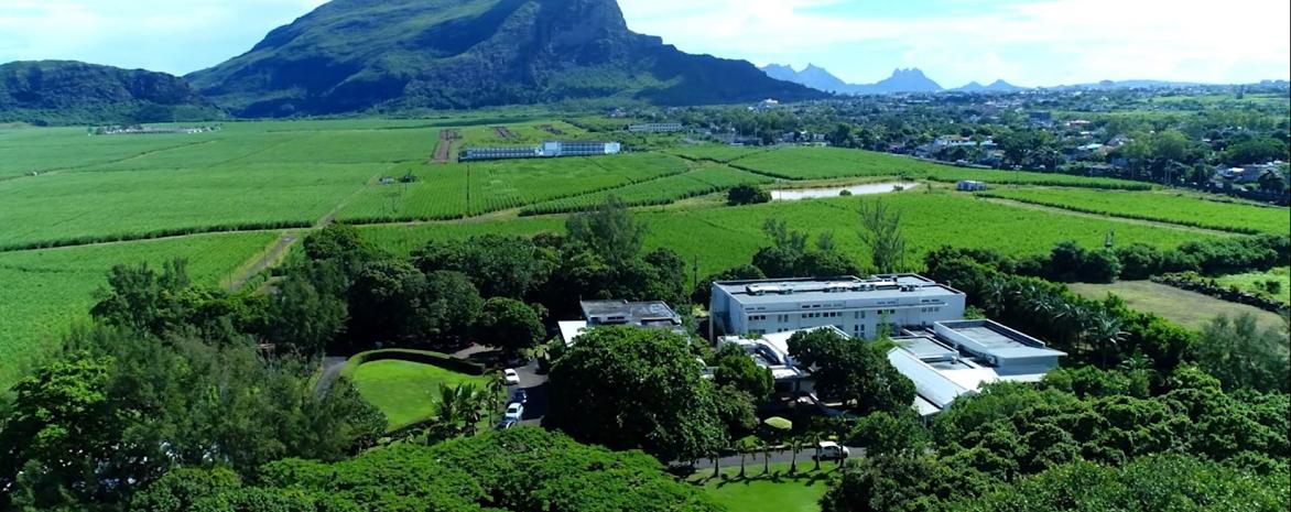 Photo du campus de Maurice LLM