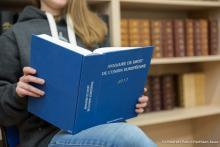Visuel de présentation de l'annuaire du droit de l'Union européenne 2017