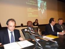 2007 wade vogel alliance europe afrique
